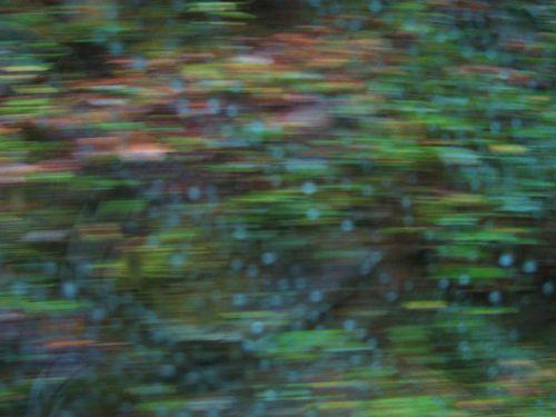 Loey's Gap Pix 014